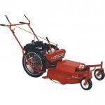 Sarlo Self-Propelled High Wheel Push Lawn Mower — Briggs & Stratton Engine, 30in. Deck, Model# 10303SPSW