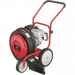 Troy-Bilt Walk-Behind Jet Sweeper — 205cc Briggs & Stratton Engine, 1,000 CFM, Model# 24A-672J766