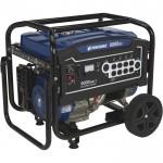 Powerhorse Portable Generator — 9000 Surge Watts, 7250 Rated Watts, Electric Start, EPA Compliant