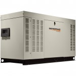 Generac Liquid-Cooled Home Standby Generator — 45 kW (LP)/45 kW (NG), Model# RG04524ANAC