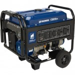 Powerhorse Portable Generator — 13,000 Surge Watts, 10,000 Rated Watts, Electric Start, EPA Compliant
